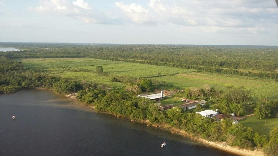 Agroindústria canavieira de Maués destina produção de álcool para ajudar no combate à Covid-19